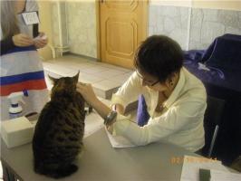 Шуберта оценивает Марина Коркка, СПБ