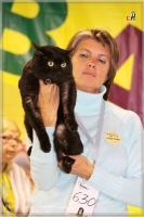 Чёрный кот Барс с хозяйкой